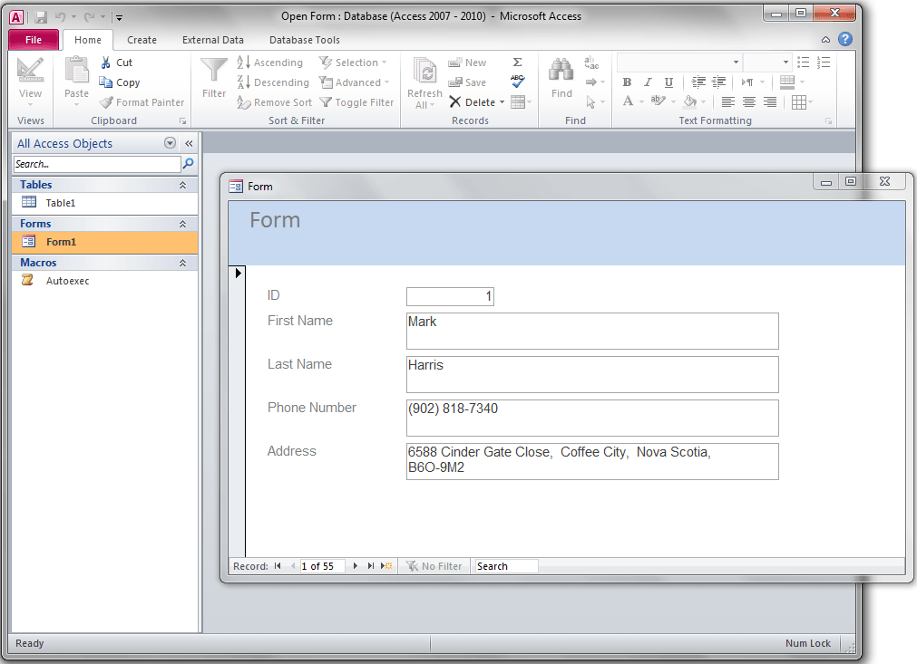 Open Blank Form When Database is Opened, Access VBA - VBA and VB Net