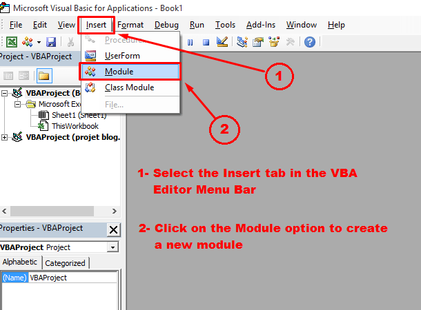Creating a new module in the VBA editor
