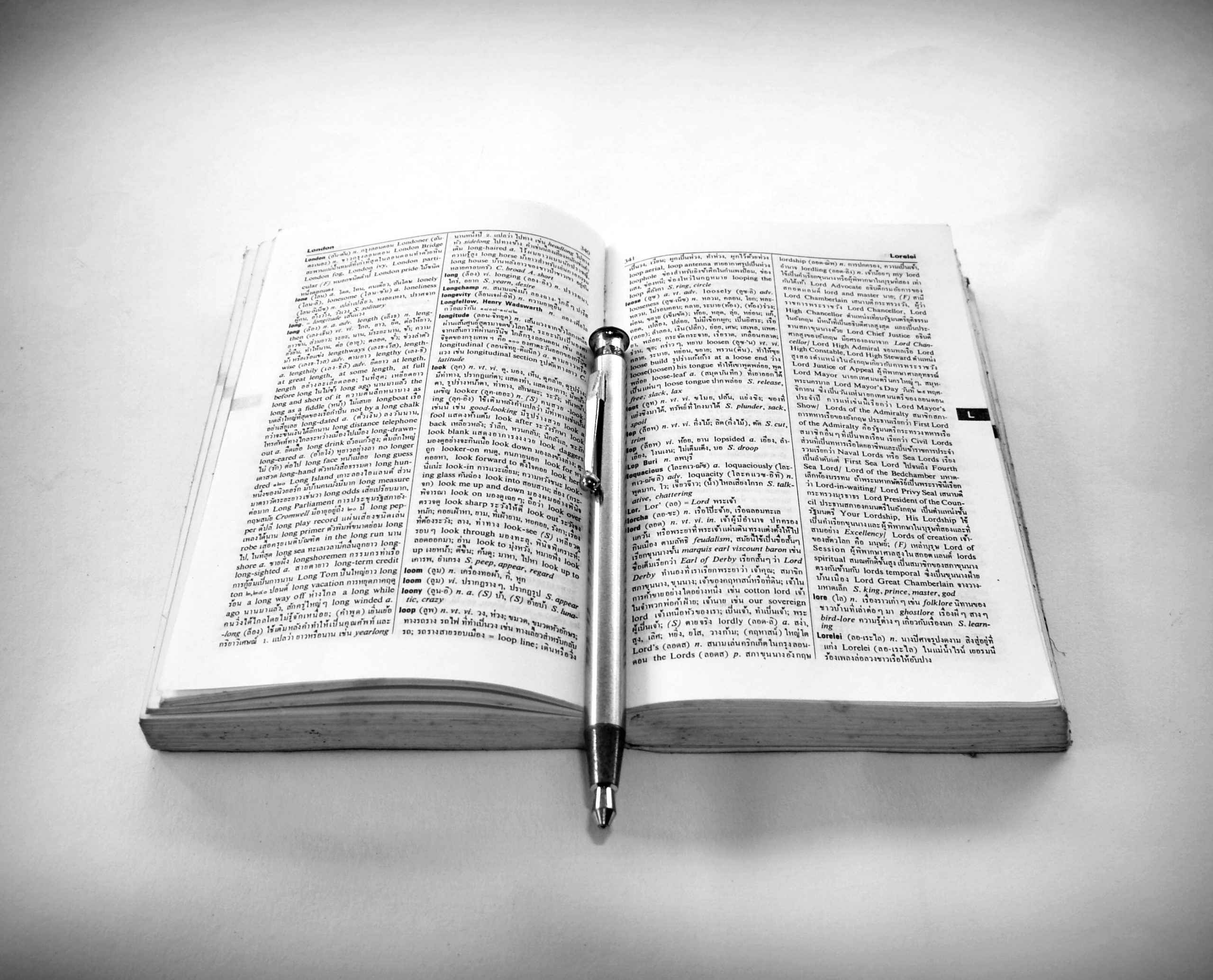 Dictionary with a pen resting on it